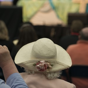 Hat, Ordination - Annual Conference 2015