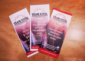 team vital brochures, korean, spanish, english