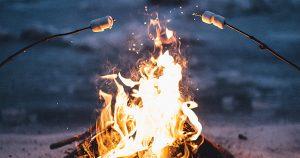 Pinelands, bonfire, camp, camping, next gen